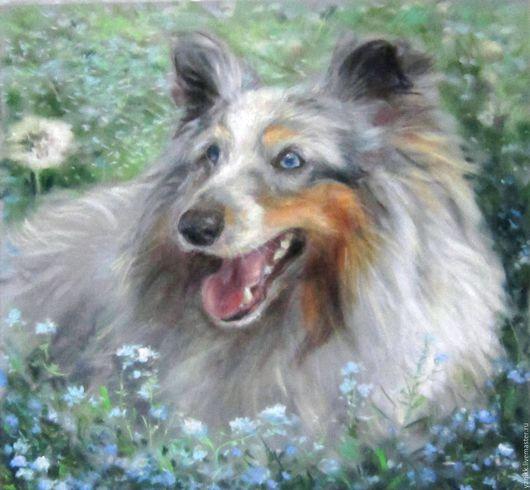 """Животные ручной работы. Ярмарка Мастеров - ручная работа. Купить Картина пастелью """"Шелти и незабудки"""". Handmade. Голубой, собака, анималистика"""