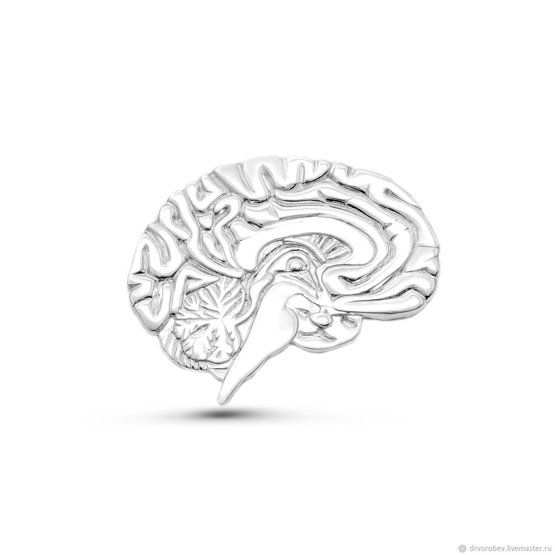 """Брошь """"Мозг №3"""", Брошь-булавка, Кострома,  Фото №1"""