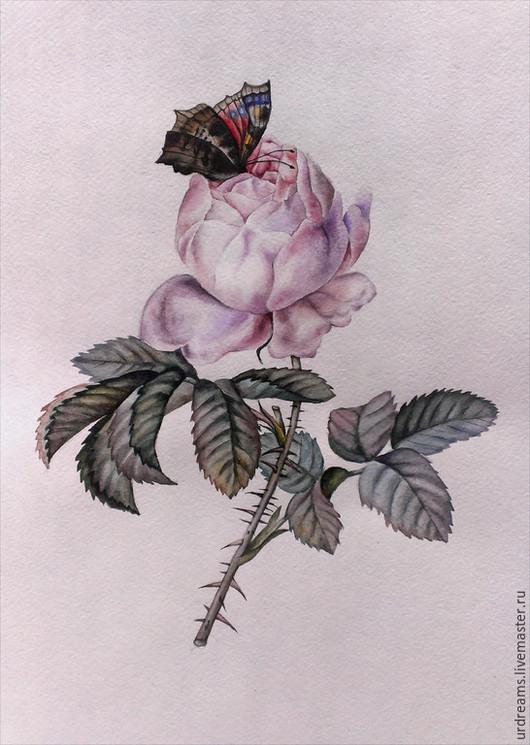 Картины цветов ручной работы. Ярмарка Мастеров - ручная работа. Купить Примадонна. Handmade. Разноцветный, акварельные цветы, акварельная бумага