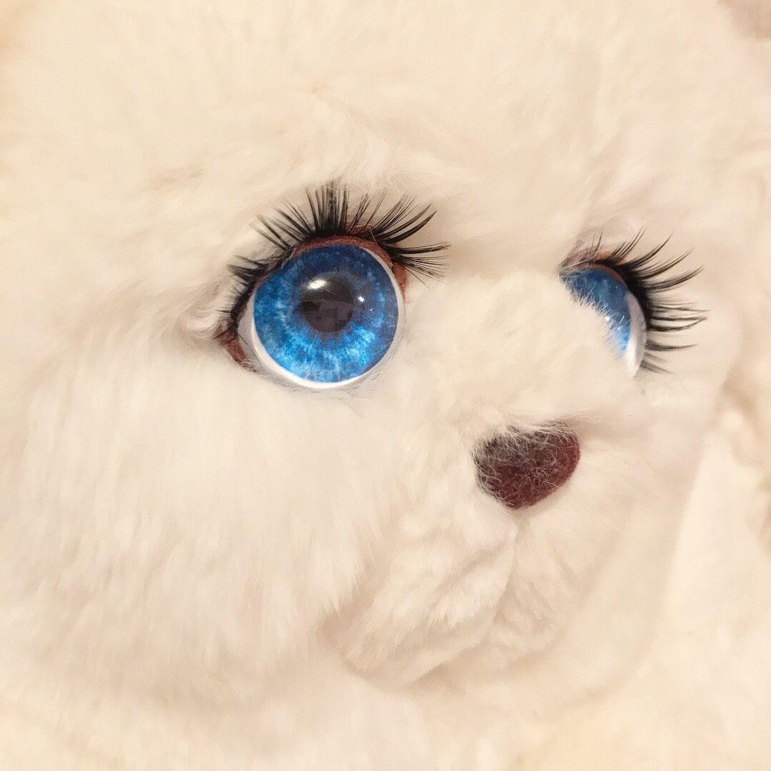 картинка голубоглазый мишка сейчас хочу поделится
