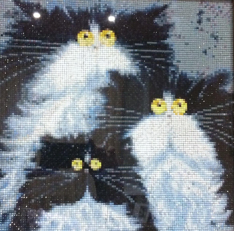 «Смешные Коты», Картины, Саратов,  Фото №1