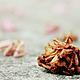 Стильное оформление Вашего интерьера и дорогих Сердцу предметов\ Снимок из серии `Жизнь Зеленых` © Angelika Nabokova