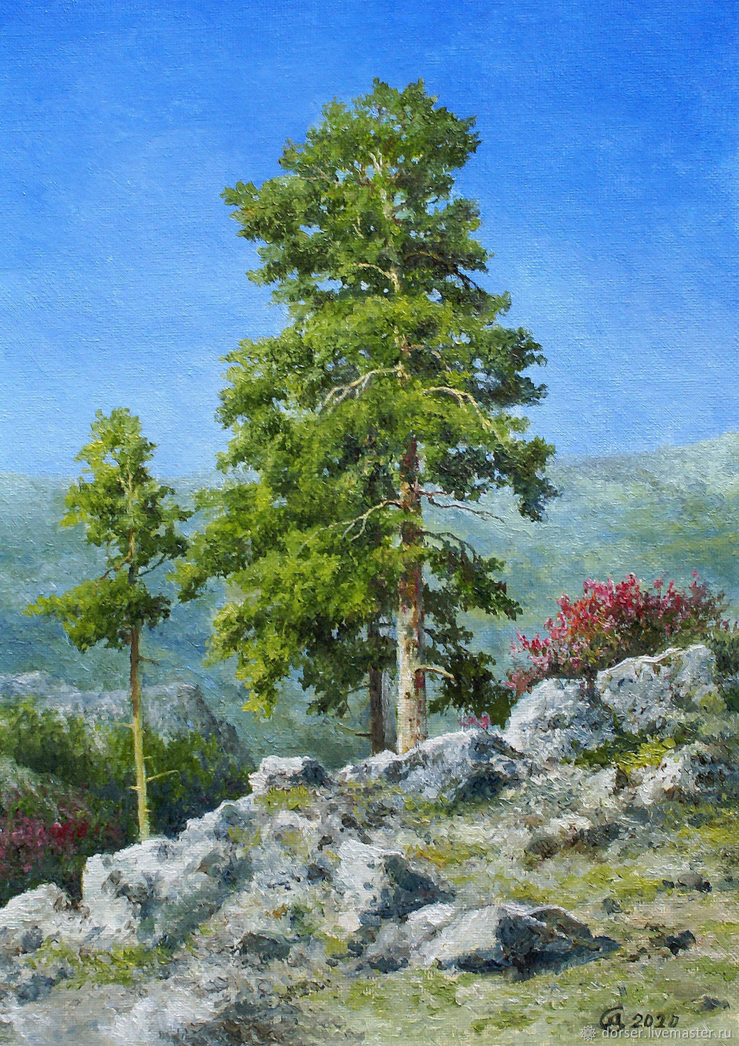 Picture-Pine trees in the mountains, Pictures, Moscow,  Фото №1