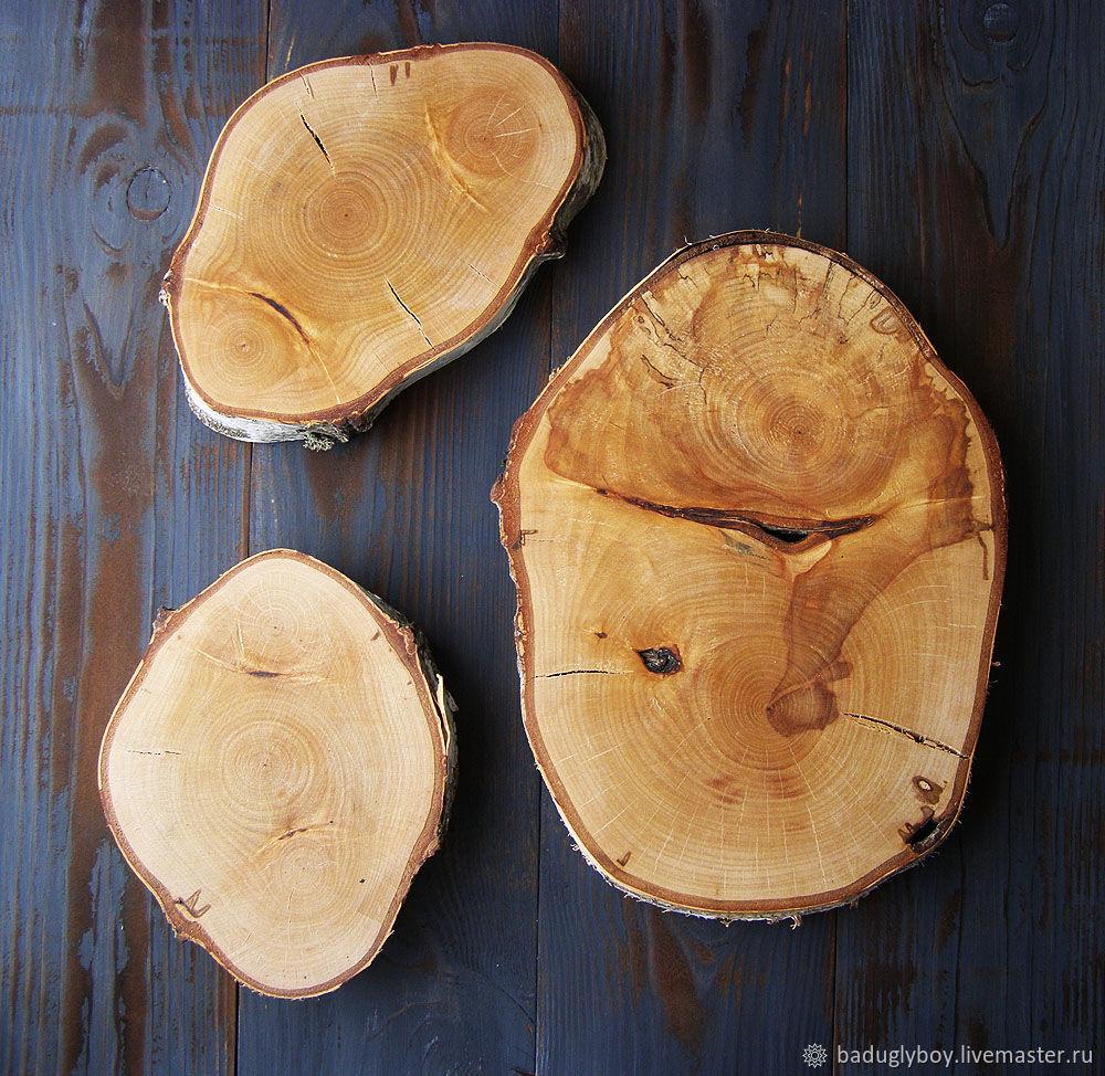 Спил дерева разные. Большие спилы, Материалы для флористики, Москва,  Фото №1