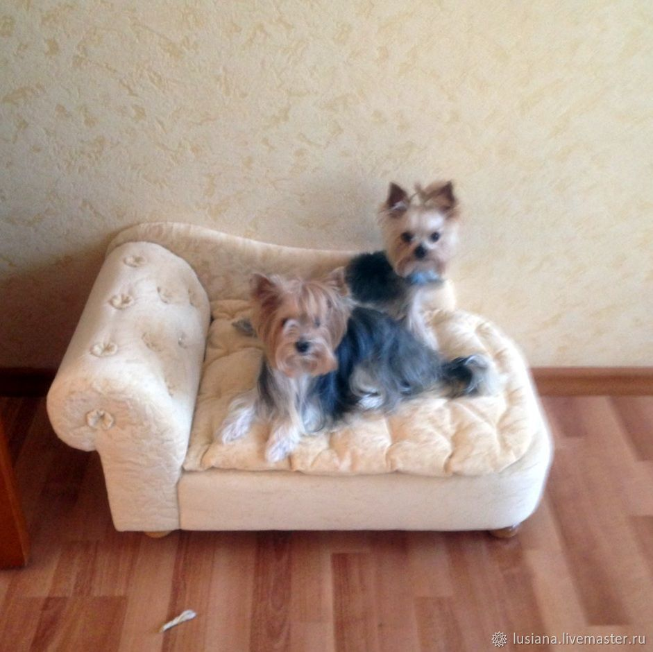 Sofa for dogs, cats Favorite. To order in the desired color, Accessories for Pets, Ekaterinburg,  Фото №1