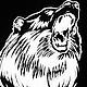 Футболки, майки ручной работы. Заказать Мужская футболка с изображением медведя. Дарья (DariaMed). Ярмарка Мастеров. Черная футболка