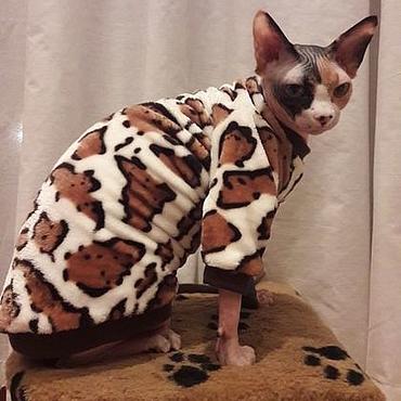 """Товары для питомцев ручной работы. Ярмарка Мастеров - ручная работа Одежда для кошек """"Снежный Барс"""". Handmade."""