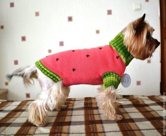 Одежда для собак, ручной работы. Ярмарка Мастеров - ручная работа. Купить Свитер для собаки  Арбузикавторская работа. Handmade. Розовый, чихуахуа