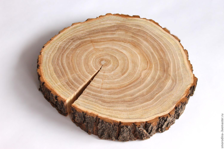 спил дерева в картинках прочный эластичный