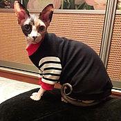 handmade. Livemaster - original item Clothing for cats