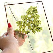 Для дома и интерьера handmade. Livemaster - original item the herbarium in the glass. the herbarium in the frame. Fern. Handmade.