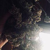 Ритуальная атрибутика ручной работы. Ярмарка Мастеров - ручная работа Тысячелистник. Handmade.