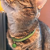 Зоотовары handmade. Livemaster - original item Dog collar