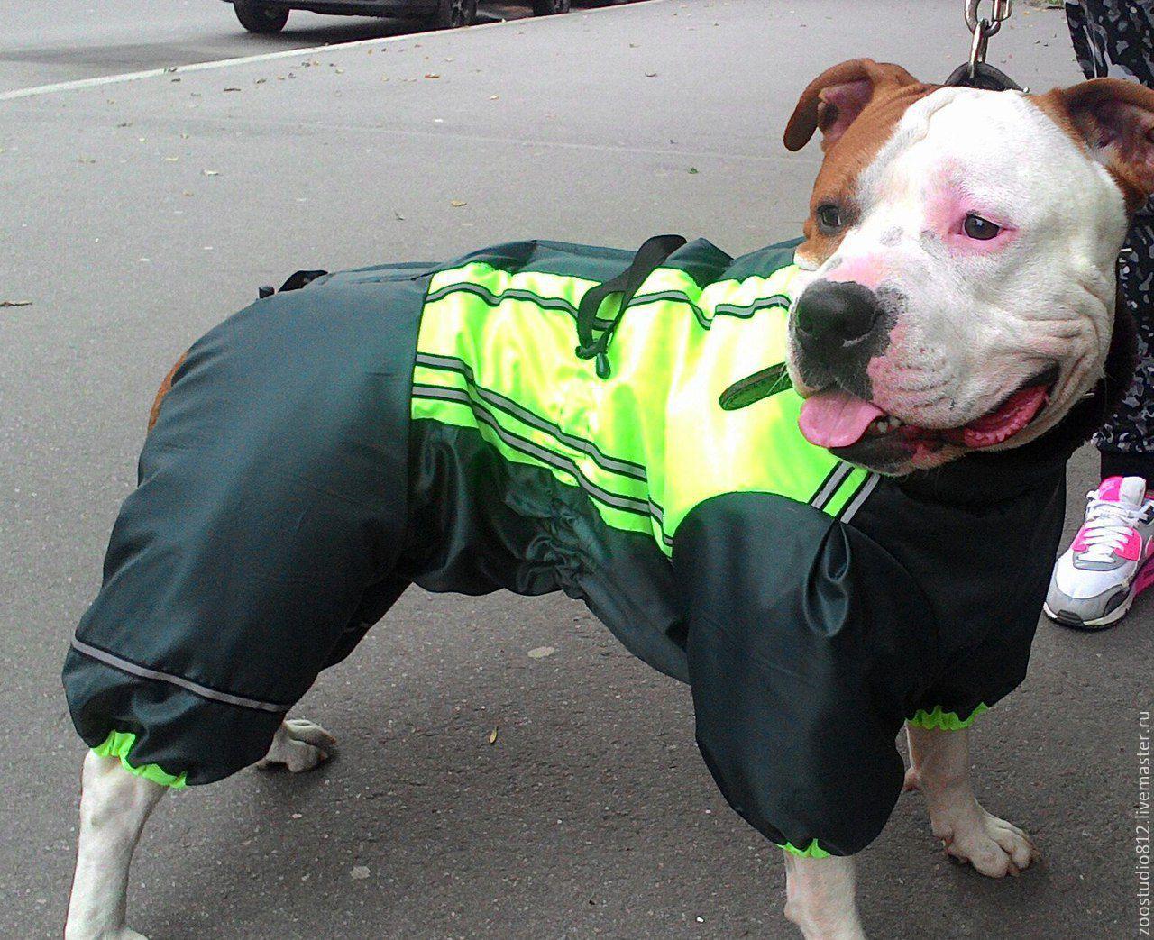 Одежда для крупных собак интернет магазин