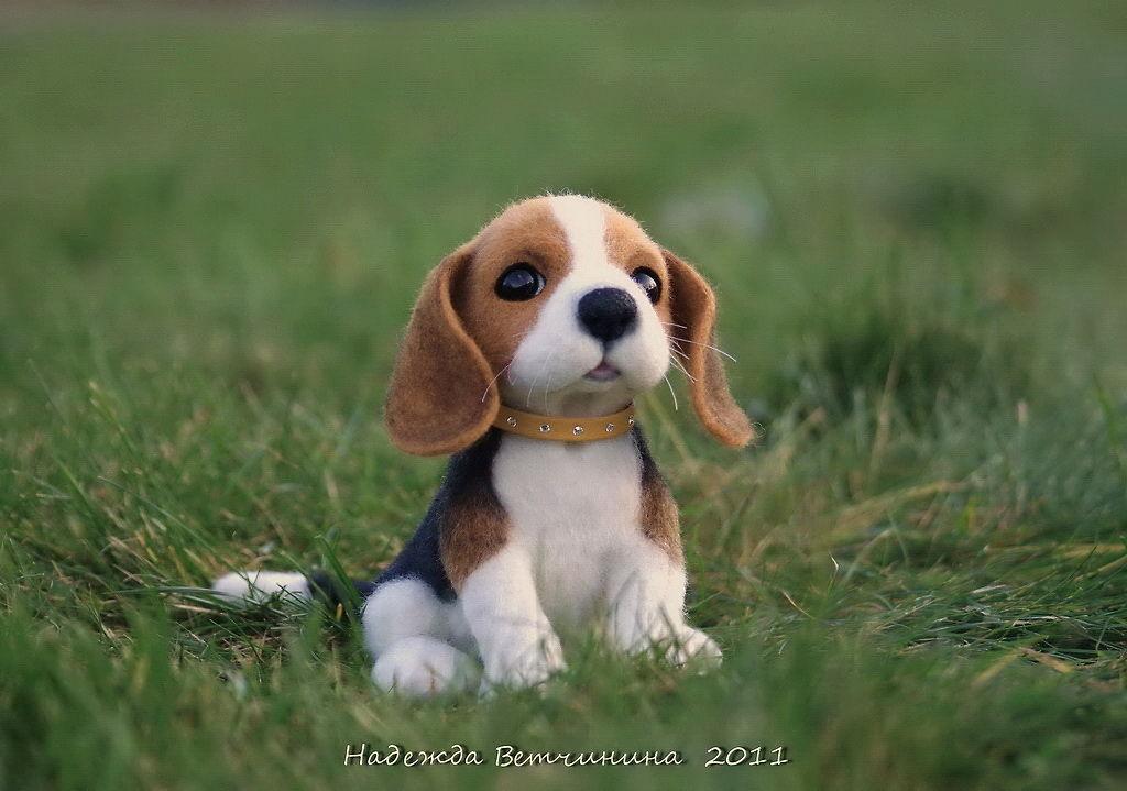 <b>Купить</b> Бигль &quot;Спарки&quot; - бигль, собака, игрушка из войлока ...