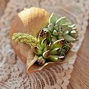Цветы и флористика handmade. Livemaster - original item Shell with succulents and cacti. Handmade.