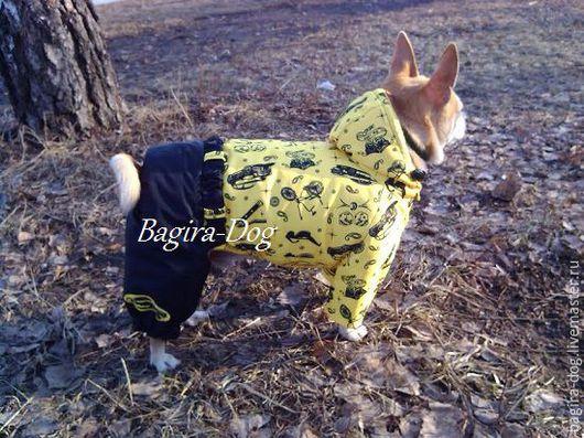 """Одежда для собак, ручной работы. Ярмарка Мастеров - ручная работа. Купить Комбинезон """" Гонщик """". Handmade. Комбинированный"""