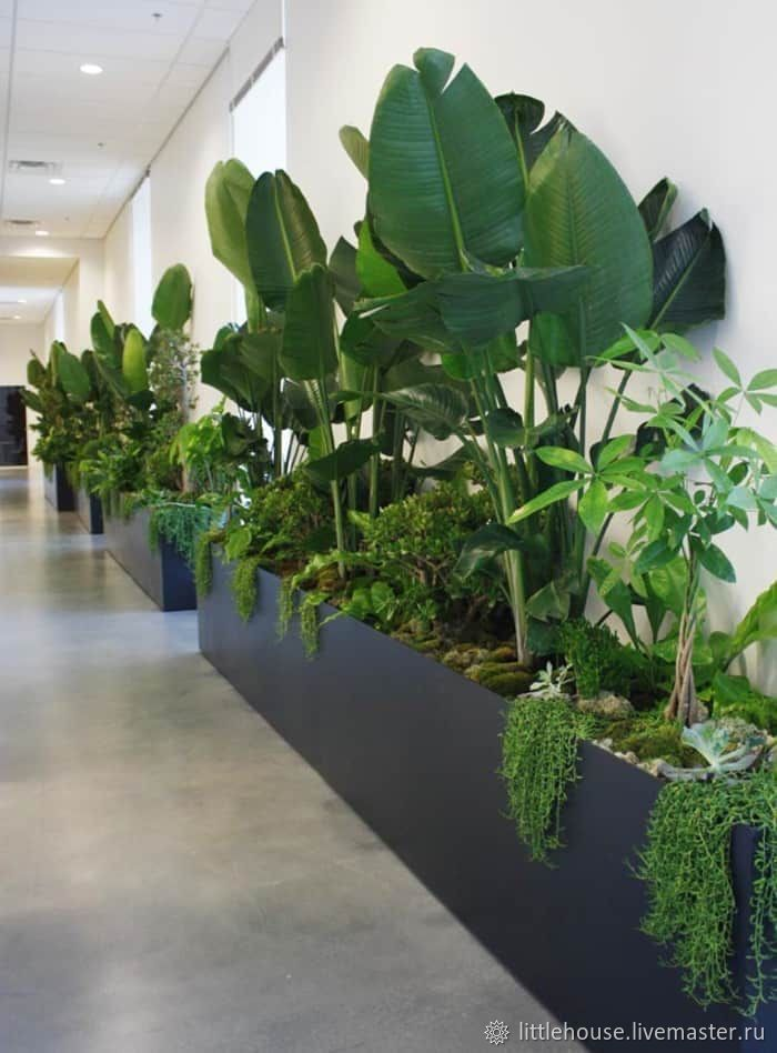 The partition wall planters outdoor, Pots1, Moscow,  Фото №1