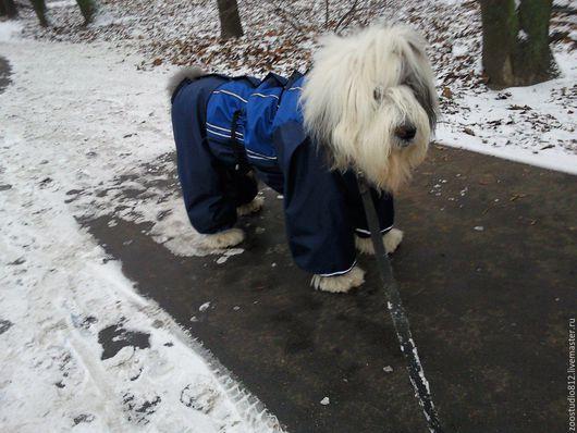 Одежда для собак, ручной работы. Ярмарка Мастеров - ручная работа. Купить Комбинезон демисезонный для собак средних и крупных пород. Handmade.