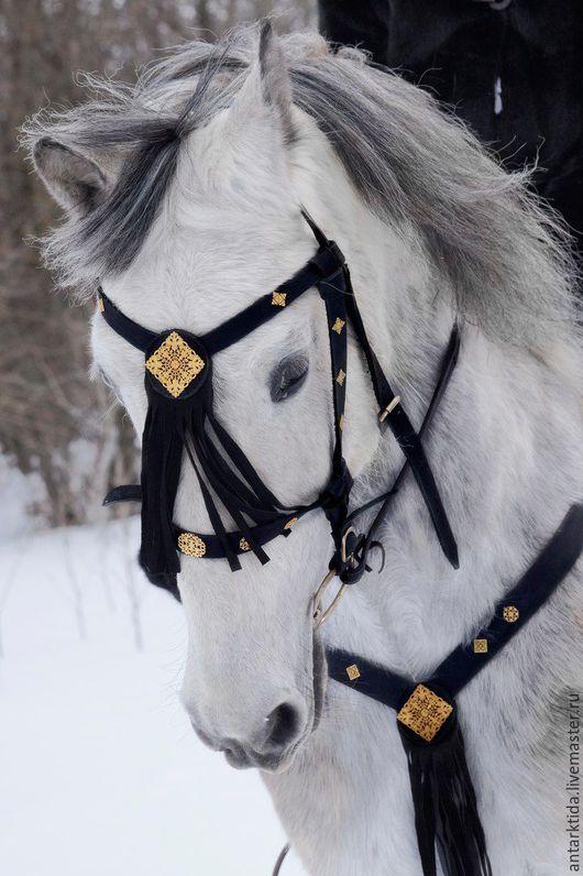 """Для других животных, ручной работы. Ярмарка Мастеров - ручная работа. Купить Узда и подперсье """"Испания"""". Handmade. Черный, лошадь"""