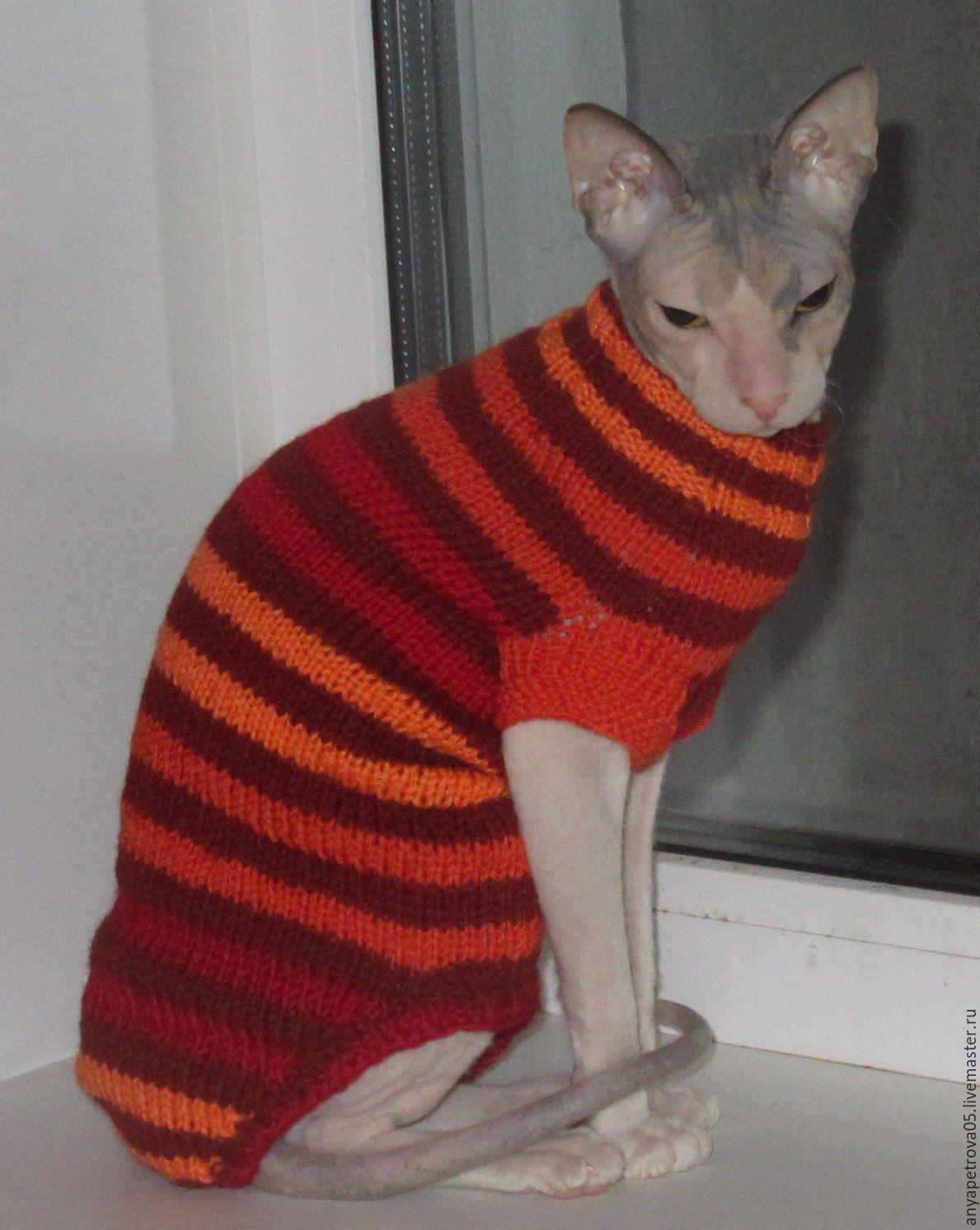 Лежанка для кота своими руками: старый свитер, поролон или 44