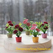 Миниатюра, цветы для минисадиков, румбоксов и кукольных домиков