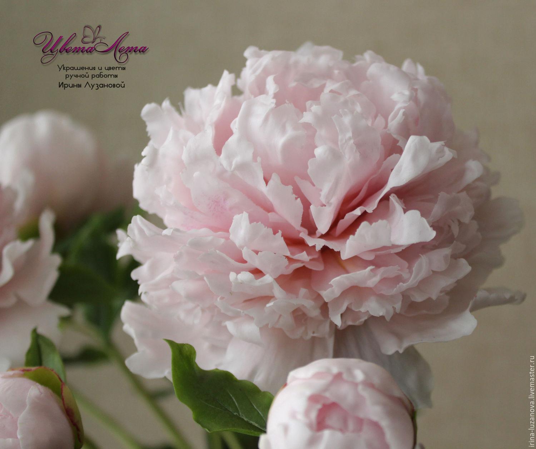 Розовый пион из холодного фарфора