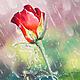 Картины цветов ручной работы. Ярмарка Мастеров - ручная работа. Купить Роза в дожде-картина маслом с розами, в подарок или в интерьер. Handmade.
