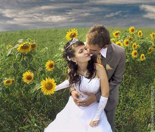 Фотограф, видеооператор на свадьбу, фотосъёмка, видеосъёмка свадебных торжеств