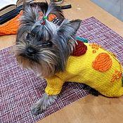 """Одежда для питомцев ручной работы. Ярмарка Мастеров - ручная работа Свитерок """"Листопад"""" для комнатной собачки или кошки. Handmade."""
