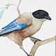 Фрагмент картины Голубые сороки.  Серия Сороки, акварель, размер А4 (21х30 см), Светлана Маркина, LechuzaS