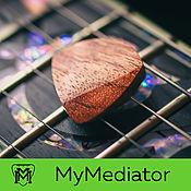 Музыкальные инструменты handmade. Livemaster - original item The pick of wood, Bubinga Jazzwood. Handmade.