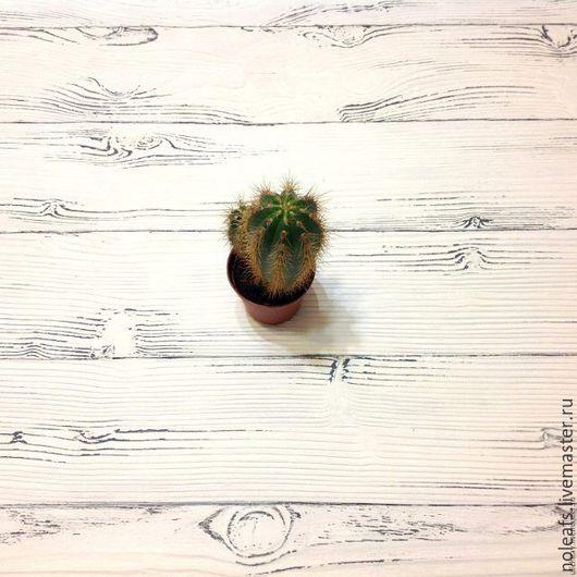 Аксессуары для фотосессий ручной работы. Ярмарка Мастеров - ручная работа. Купить Фотофон Белый кактус. Handmade. Фотофон для съемки, фотофон