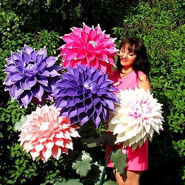 Flowers and floristry handmade. Livemaster - original item Growth dahlias Birthday decor Cafe photo Zone. Handmade.