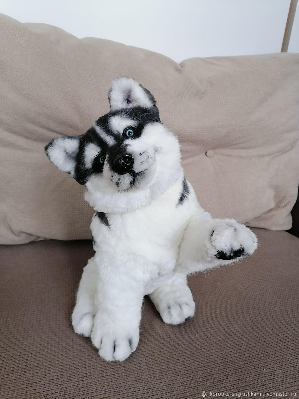 Тедди Зверята: собака на скелете, Мягкие игрушки, Нижний Новгород,  Фото №1