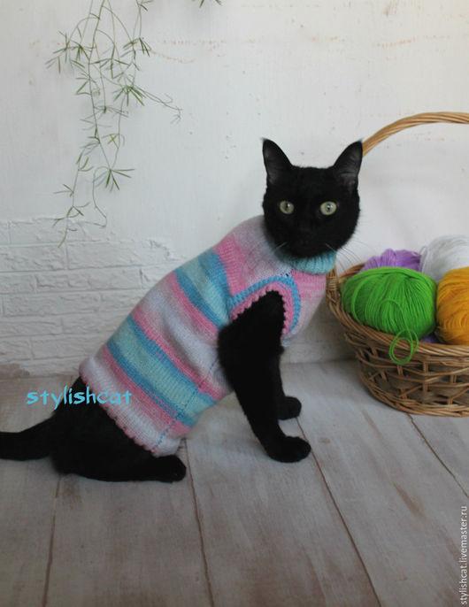 Одежда для кошек, ручной работы. Ярмарка Мастеров - ручная работа. Купить Свите для котов и кошек.. Handmade. Комбинированный, свитер для кошек