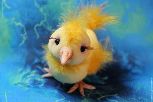 Цыплёнок Цыпа нежное, пушистое, мягонькое чудо! Очень любит сидеть на ручках. Поднимает настроение в любой самый пасмурный день как тёплое солнышко!