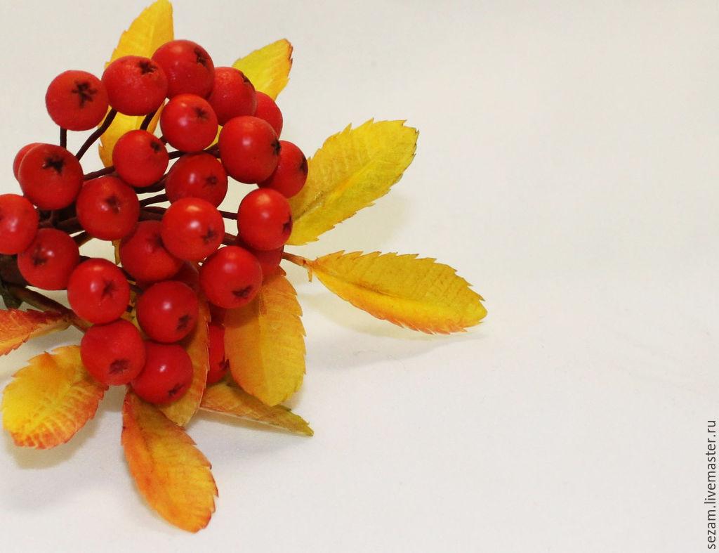 """Интерьерные композиции ручной работы. Ярмарка Мастеров - ручная работа. Купить Брошь """"Рябиновое настроение"""". Handmade. Осень, ярко-красный"""