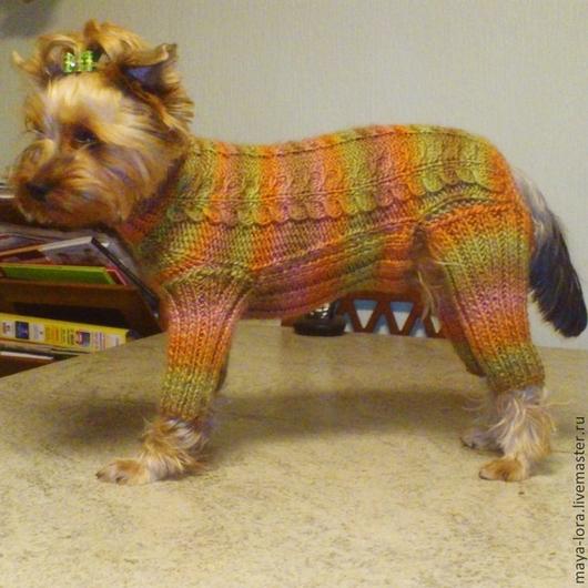 """Одежда для собак, ручной работы. Ярмарка Мастеров - ручная работа. Купить Одежда для собак. Комбинезон из ровницы """"Осенний листопад"""". Handmade."""