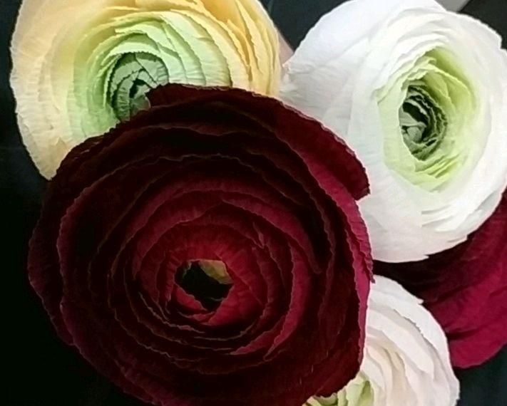 цветы из бумаги, Цветы, Горно-Алтайск,  Фото №1
