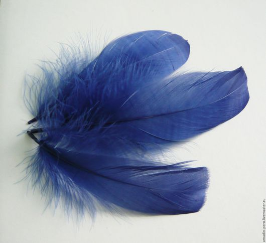 Другие виды рукоделия ручной работы. Ярмарка Мастеров - ручная работа. Купить Перо гуся темно-синее 12-17см 10шт. Handmade.