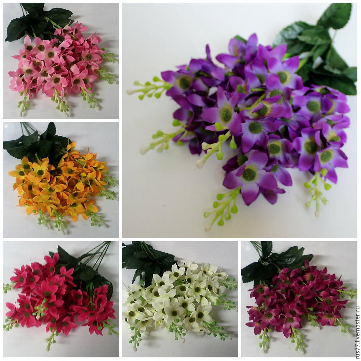 Ампельные цветы, Цветы, Москва, Фото №1