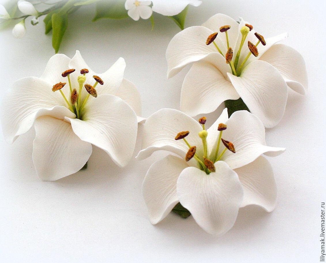 Купить миниатюрные лилии