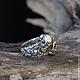 """Кольца ручной работы. """"Sansara"""" серебряное кольцо с рубином, кольцо с черепом, брутальное. Adorazione (adorazione). Ярмарка Мастеров. Байкерское кольцо"""