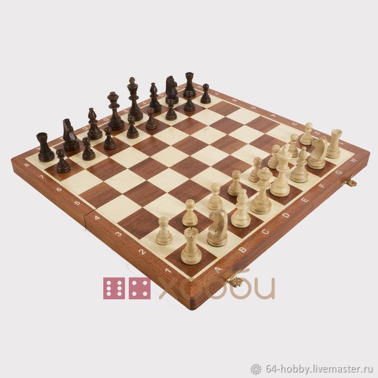 Chess ' Tournament No. №6', Chess, St. Petersburg,  Фото №1