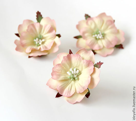 Диаметр цветочка 6 см.  Высота 1,5 см.  Цена указана за 1 цветок.