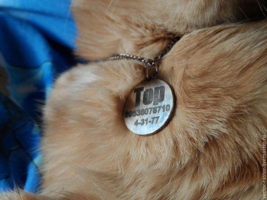 Аксессуары для кошек, ручной работы. Ярмарка Мастеров - ручная работа. Купить Адресник для животных. Handmade. Серебряный, жетон, для девочки, адресник