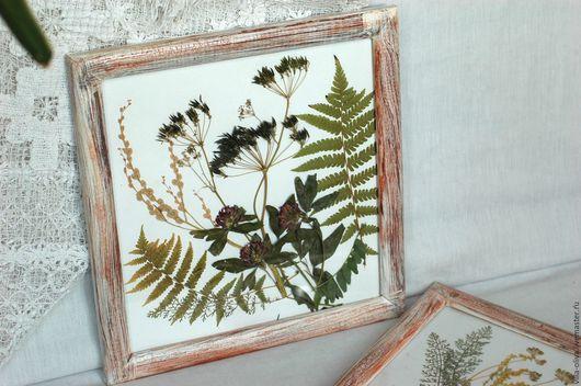 Картины цветов ручной работы. Ярмарка Мастеров - ручная работа. Купить Винтажные рамы с гербарием из сухих цветов. Handmade. Белый