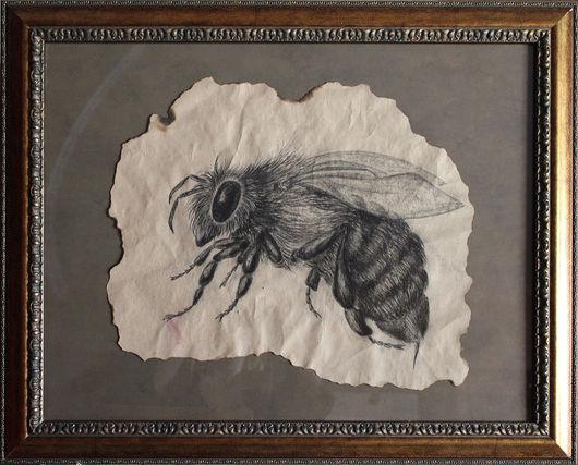 """Животные ручной работы. Ярмарка Мастеров - ручная работа. Купить Картина углем """"Пчела"""". Handmade. Чёрно-белый, картина в кабинет"""