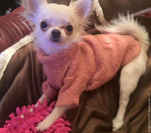 Одежда для собак, ручной работы. Ярмарка Мастеров - ручная работа. Купить СВитер-пальто для собаки авторская работа. Handmade. Розовый
